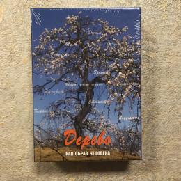 """Метафорические карты """"Дерево как образ человека"""""""