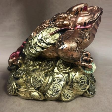 Большая  денежная жаба