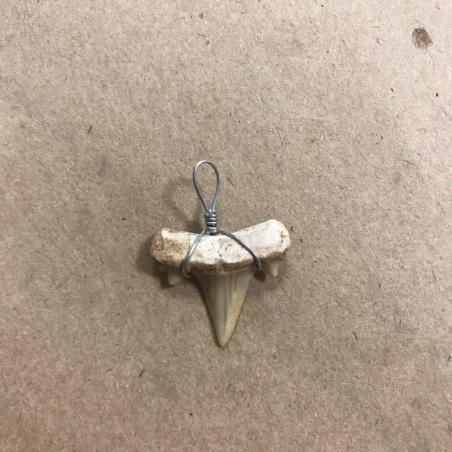 Амулет Зуб Акулы (ископаемое 100 млн. лет)